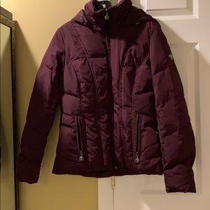 Purple winter coat